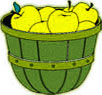 basket of yellow apples