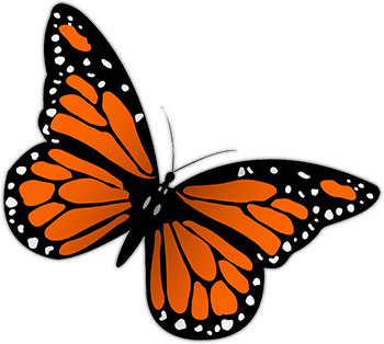 free butterfly graphics images of butterflies animations clipart rh carlswebgraphics com Animated Birds and Butterflies free animated monarch butterfly clipart