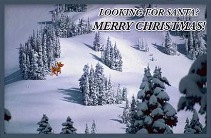 Free Christmas Tree Graphics - Christmas Tree Animations - Clipart