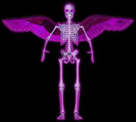 skeleton with wings