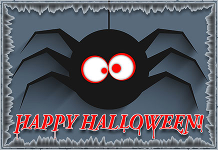black spider - Happy Halloween